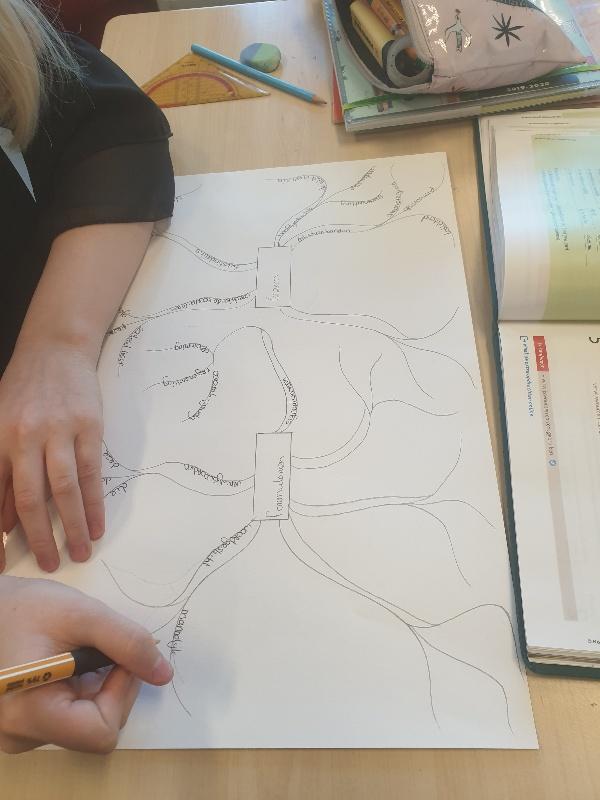 Inzicht krijgen in de leerstof met een mindmap